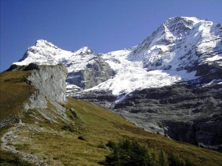 Jungfrau-Panoramaweg Eigergletscher-Wengernalp (2) - Kleine Scheidegg