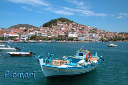 Der Hafen von Plomari - Hafen Plomari