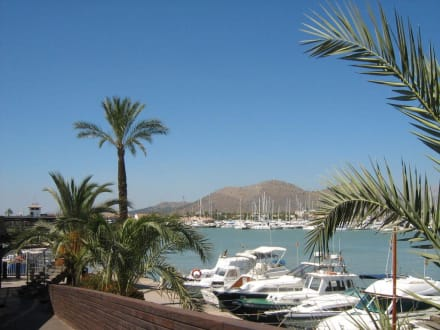 Port d'Alcudia - Yachthafen Alcudia