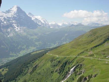 Wanderweg grosse Scheidegg - First - Grosse Scheidegg