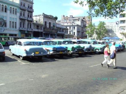 Oldtimer in Havanna - Altstadt Havanna