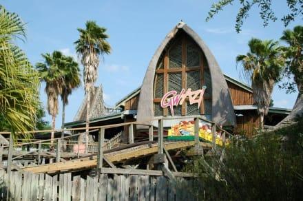 Gwazi - Busch Gardens