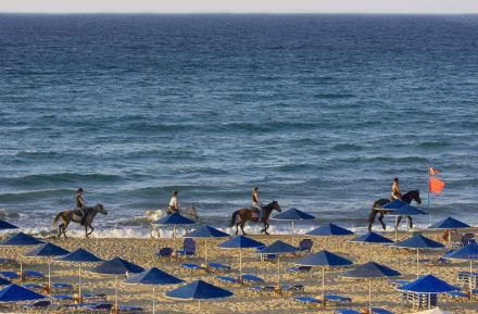 отеля - Hotel Pilot Beach