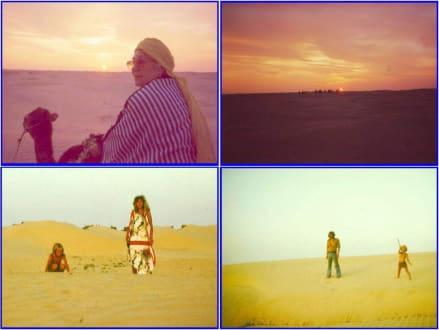 Bildimpressionen von der Wüste im Raum Douz - Saharaausflug