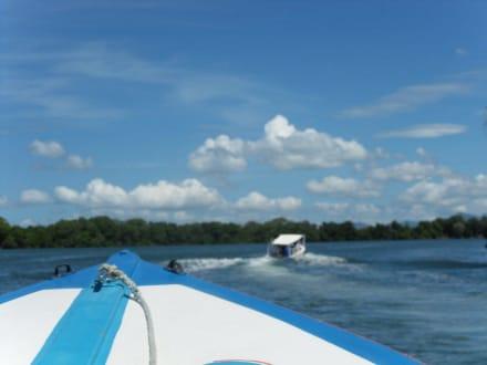 Lagoon Restinga - La Restinga Park