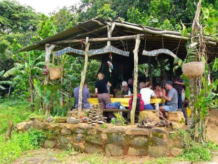 Siesta - El Guamache