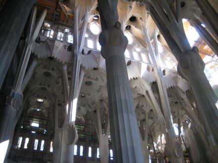 Säulen - Sagrada Familia