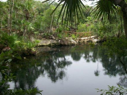 Naturreservat/Zoo - Xel-Ha Nationalpark