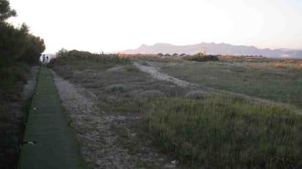 Der Weg zum Strand - Lambi