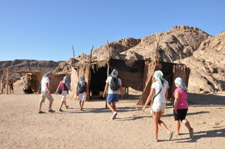 Landscape (other) - Trips with the Bedouin inhabitants