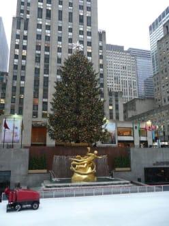 Xmas-Baum mit Eislaufanlage am Rockefeller Center - Weihnachtsbaum am Rockefeller Center