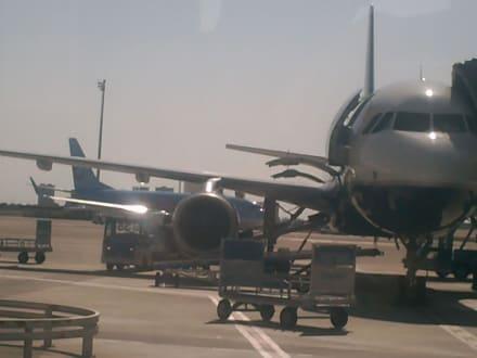 Rollstühle fliegen auch - Flughafen Antalya (AYT)
