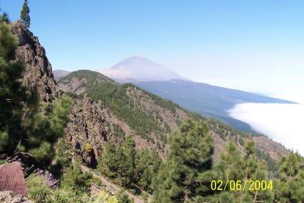 Blick auf den Teide - Teide Nationalpark