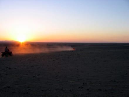 Wüsten-Safari (Quad) - Ausflüge mit Mohamed Ali