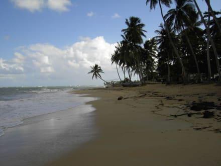 Playa Cozon - Playa Cozón