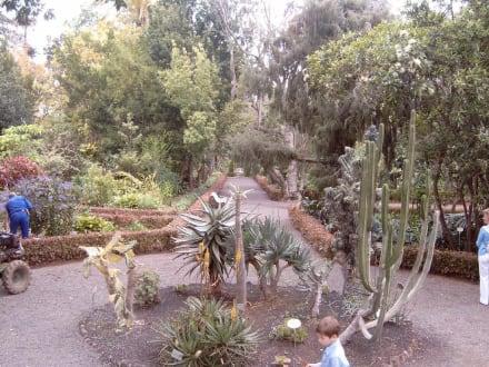 Jardin Botanico in Puerto de la Cruz - Botanischer Garten Puerto de la Cruz