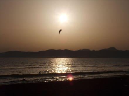 Sonnenuntergang - Strand Playa/Platja de Palma