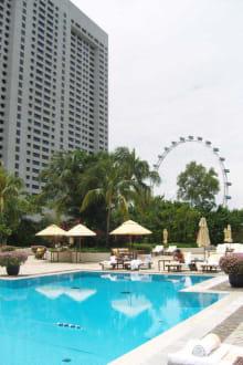 Pool auf dem Dach - Hotel The Mandarin Oriental Singapore