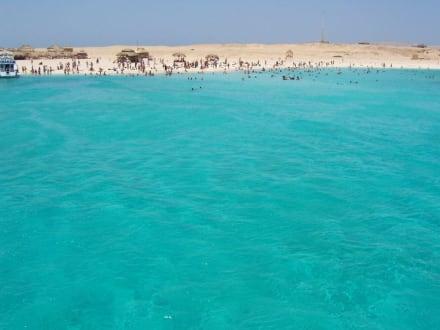 paradies insel - Giftun / Mahmya Inseln