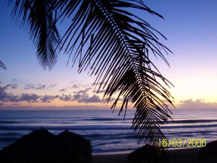Lichtspiele - Playa Camino