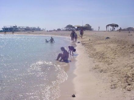 Bootstour - Giftun / Mahmya Inseln
