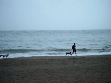 Strand Cabarete Dominikanische Republik - Playa Cabarete