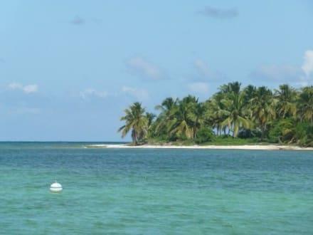 Mittagsbucht - Katamaran Tour Tropical Storm Punta Cana