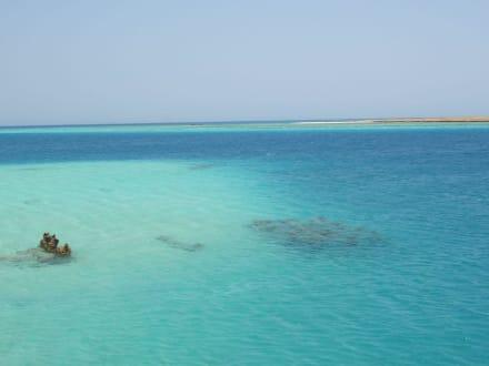 Schnorchel-Ausflug - Schnorcheln Hurghada