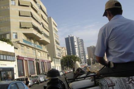 Kutschenfahrt durch Malaga - Touren & Ausflüge