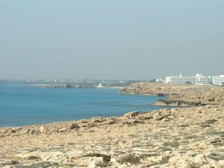 Der Weg zum Beach - Nissi Beach