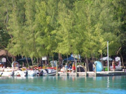 Blick auf die Insel - Île aux Cerfs