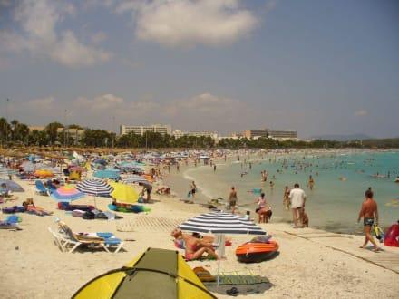Strand in Sa Coma um die Mittagszeit - Strand Sa Coma