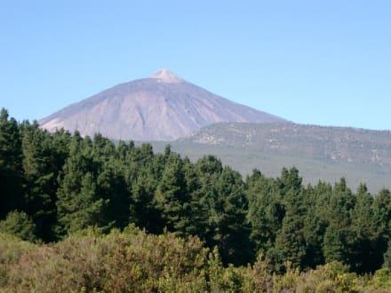El Teide - Teide Nationalpark