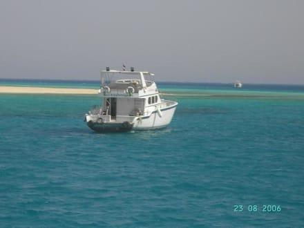 Boot - Giftun / Mahmya Inseln