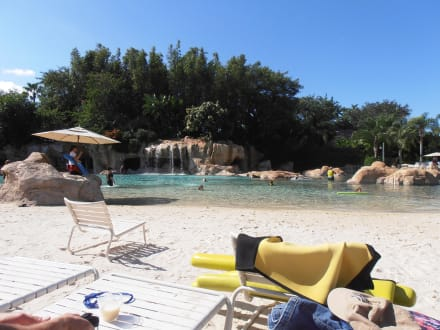 Nature reserve/Zoo - Discovery Cove Theme Park