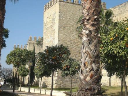 Außenmauer - Alcazar