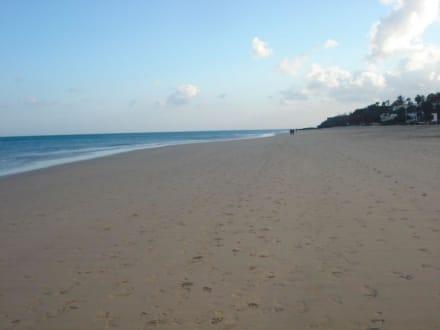 Strand - Strand Costa Calma