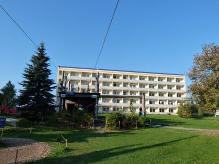 Start & Ziel Kletterwald/Hochseilgarten - IFA Schöneck Hotel & Ferienpark