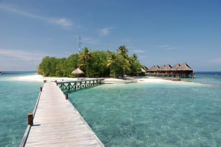 Blick auf die Insel von den Bungalows - Hotel Mirihi Island Resort