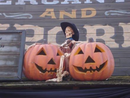 Halloween Deko - Port Aventura