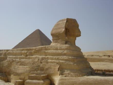 Sphinx mit Pyramide - Sphinx von Gizeh
