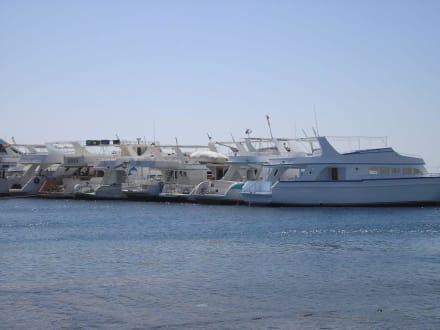 Yachthafen Hurghada - Zentrum Hurghada