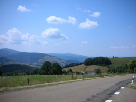 Schauinsland - Bergwelt Schauinsland