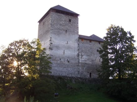 Historic sites (castle, palace, ruins, etc.) - Castle Kaprun
