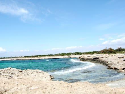 Kleine Bucht - Strand Ayia Napa/Agia Napa