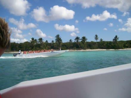 Mit dem Speedboat zur Insel - Isla Saona