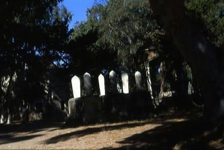 Gräber auf dem Türkischen Freidhof - Türkischer Friedhof