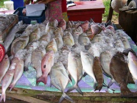 Toller frischer Fisch - Markt Bang Niang Beach