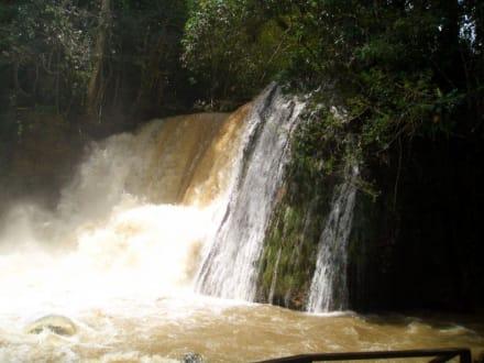 YS-Falls - YS Falls / Y.S. Wasserfälle