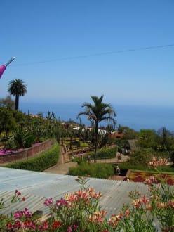 Rund um Blick - Botanischer Garten Funchal